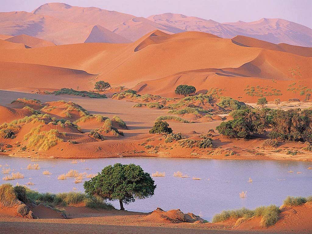 Hiking Along Sand Dune Namib Desert Sossusvlei Namibia Fonds d