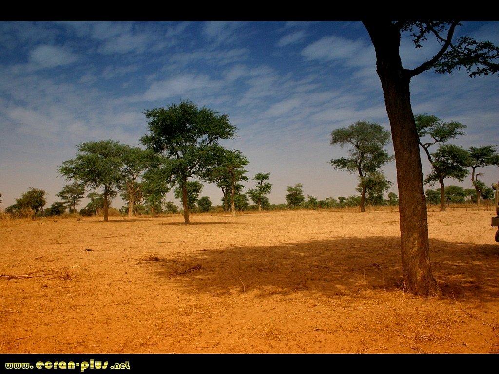 senegal-paysage